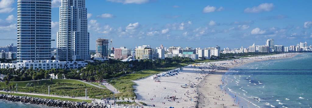miami beach pest control services sharp shot pest control miami beach florida